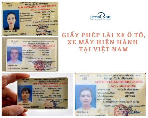 giấy phép lái xe tại việt nam
